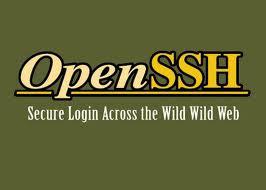Instalacion del servicio SSH